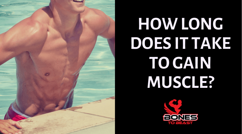 how long to gain muscles