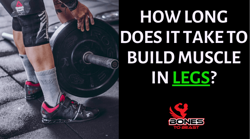 How long does it take to build muscle in legs?