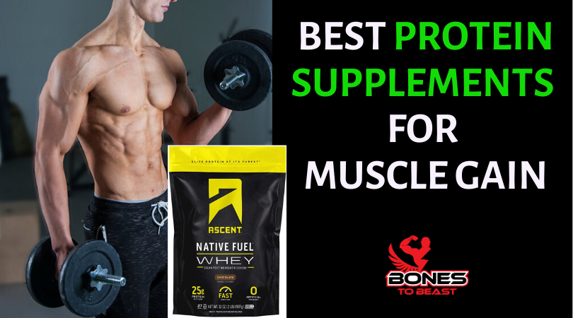 Protein Supplements for Muscle Gain