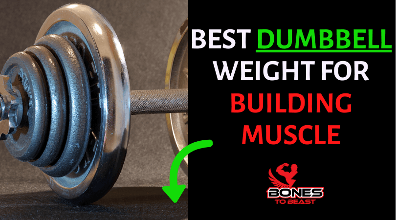 Best dumbbell weight for building muscle